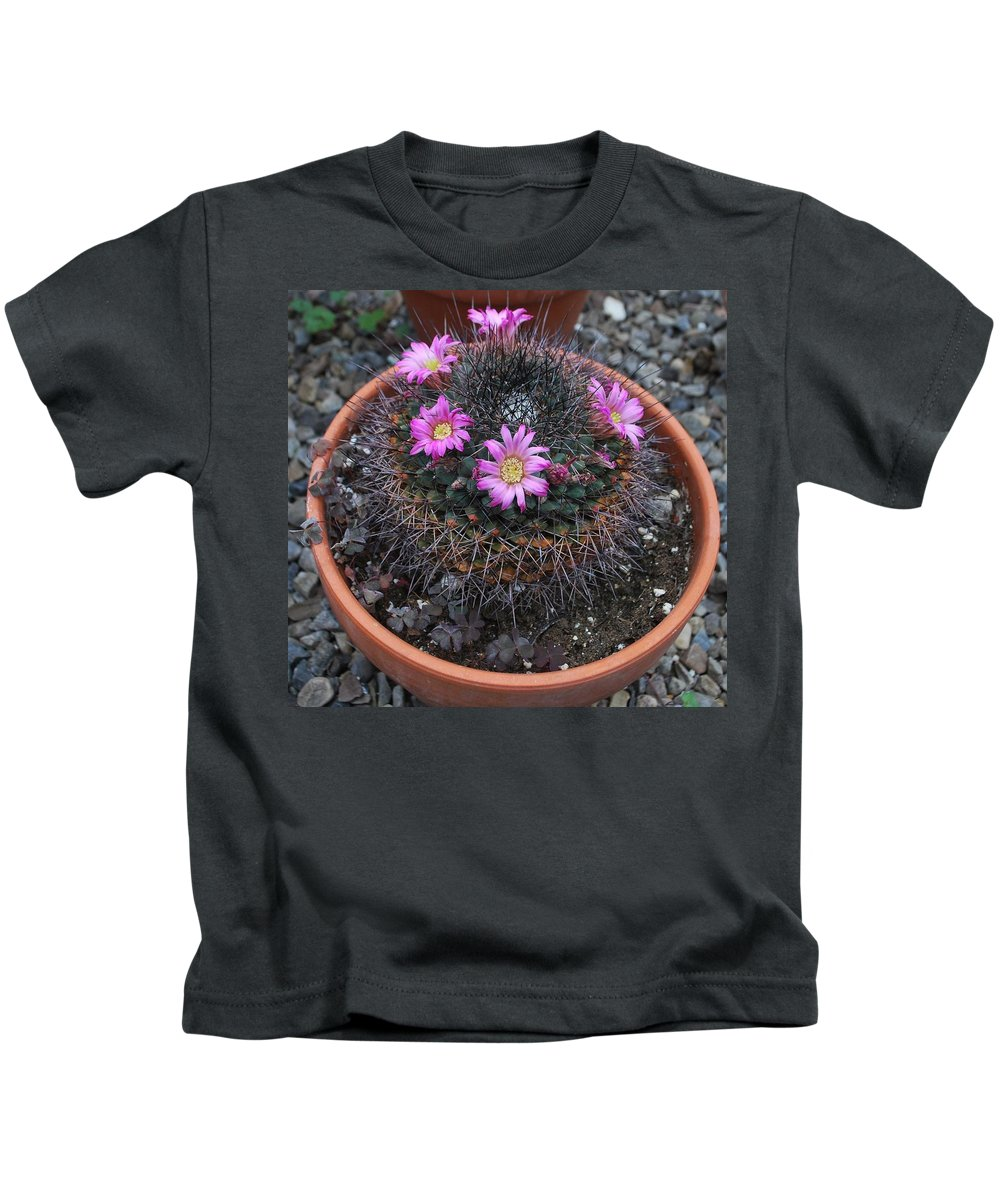 Blooming Kids T-Shirt featuring the photograph Blooming Cactus by Eileen Marie Ardillo