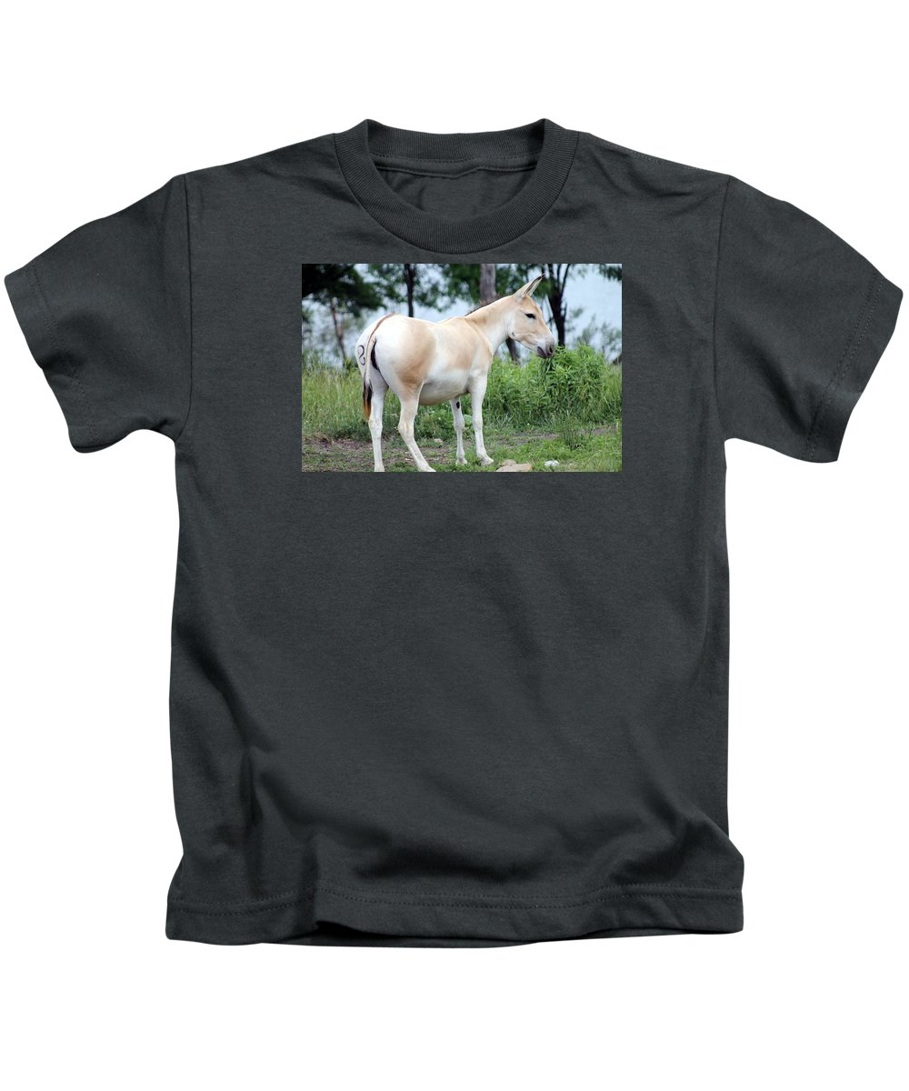 Przewalski's Kids T-Shirt featuring the photograph Branded by Wendy Gertz