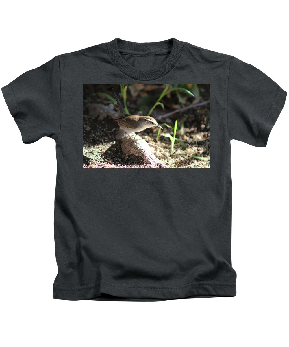 Beswick Wren Kids T-Shirt featuring the photograph Breswick Wren On Tree Root 2 by Colleen Cornelius