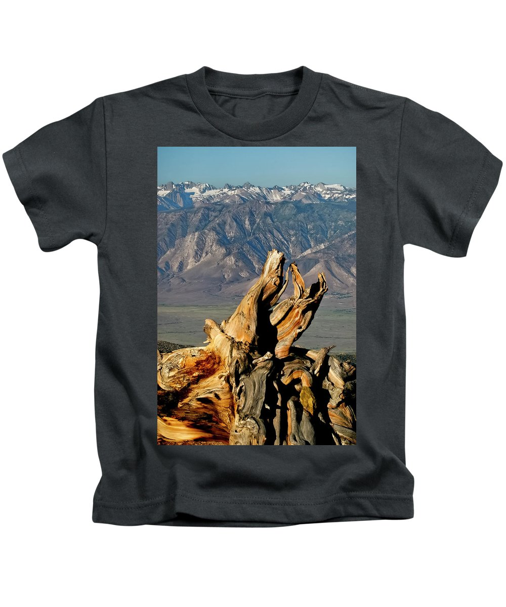 Bristlecone Pine Forest Kids T-Shirt featuring the photograph Bristlecone Pine Down by Albert Seger