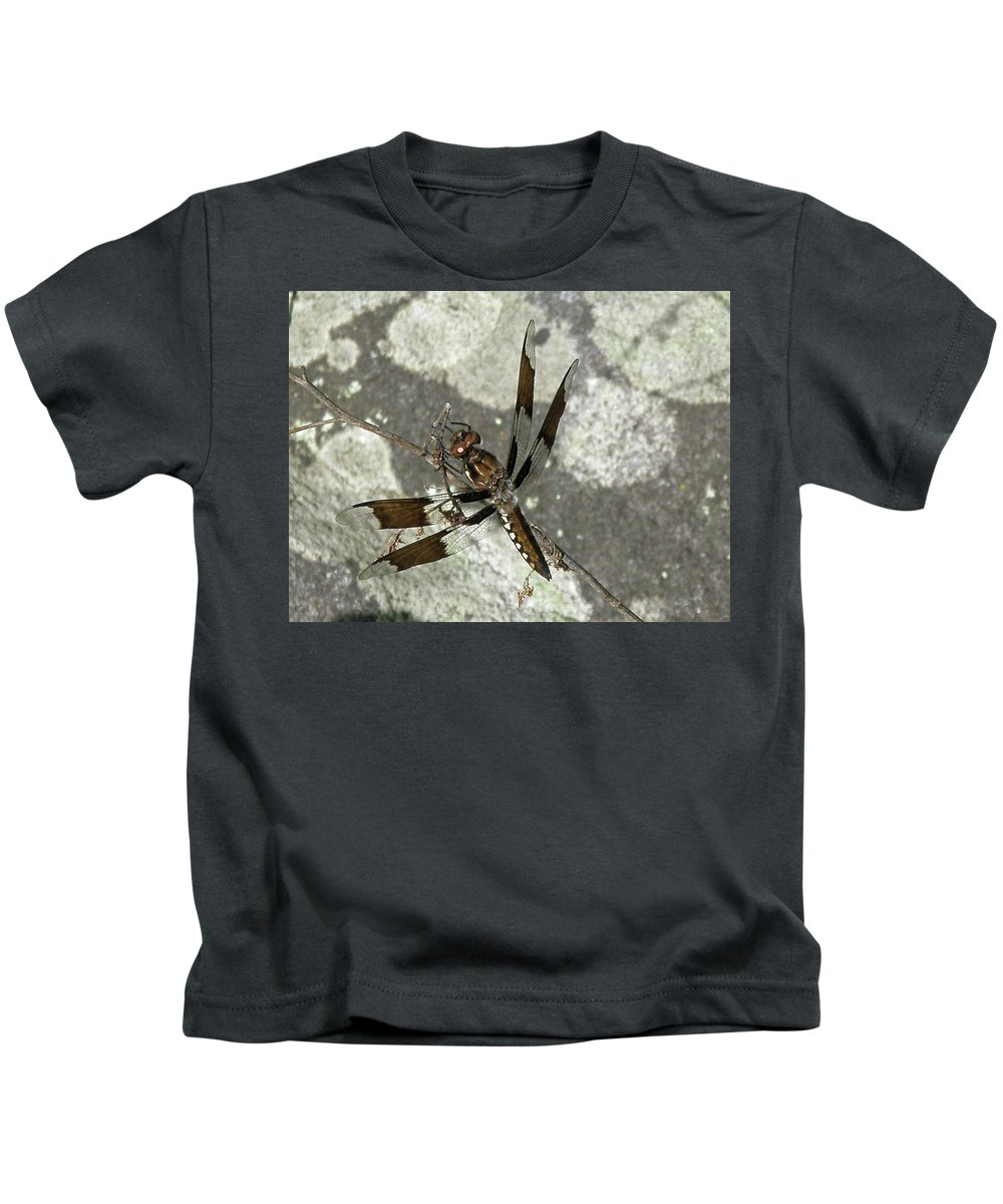 Dragonfly Kids T-Shirt featuring the photograph Brown Dragonfly by Mother Nature