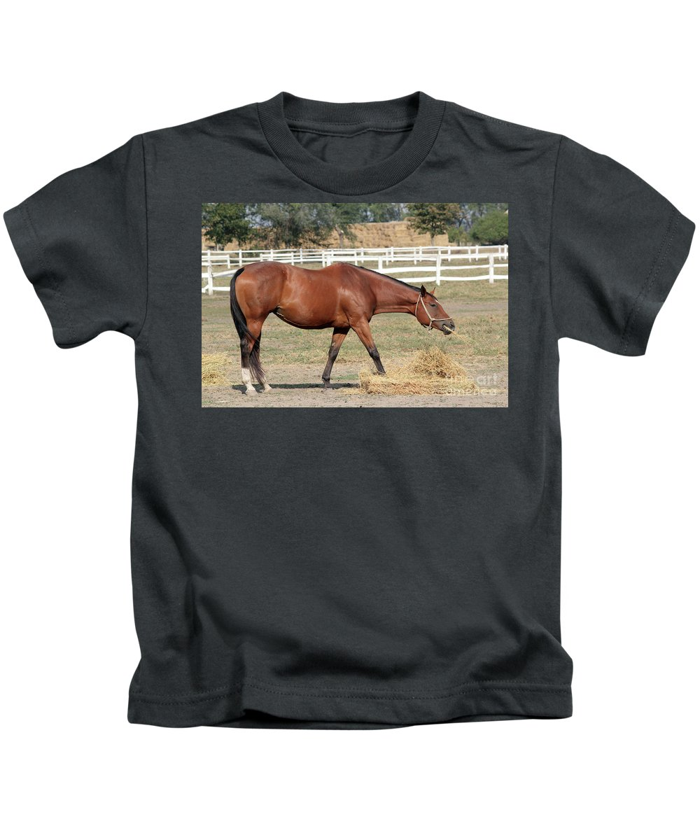 Horse Kids T-Shirt featuring the photograph Brown Horse Eating Hay Ranch Scene by Goce Risteski