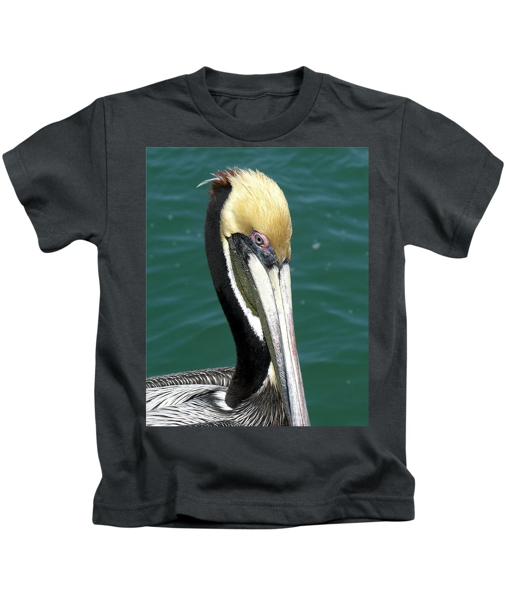 Pelecanus; Occidentalis; American; Brown; Pelican; Bird; Sea; Seabird; Ocean; Space; Coast; Cape; Ca Kids T-Shirt featuring the photograph Brown Pelican by Allan Hughes