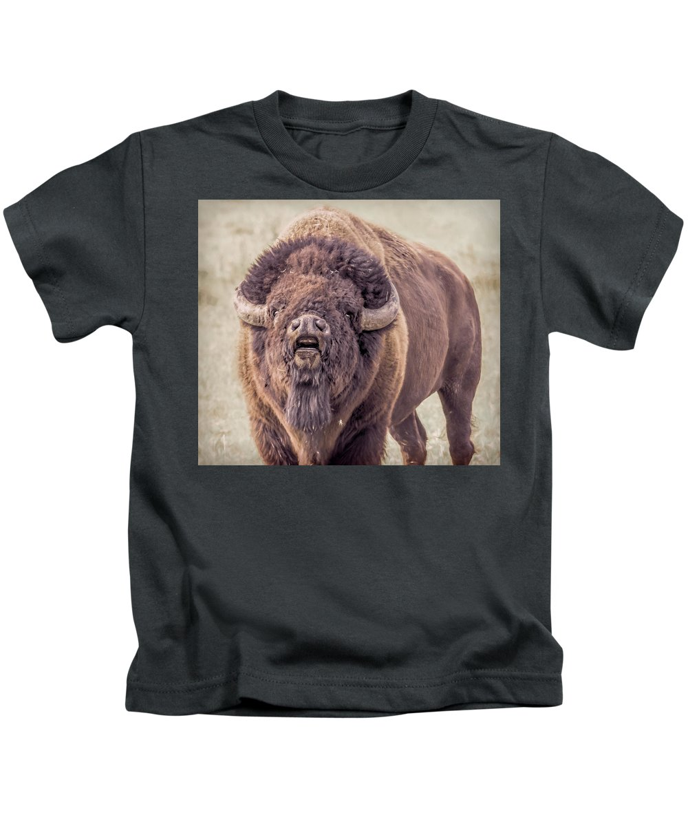 Bison Kids T-Shirt featuring the photograph Bull Bison by Cindi Alvarado