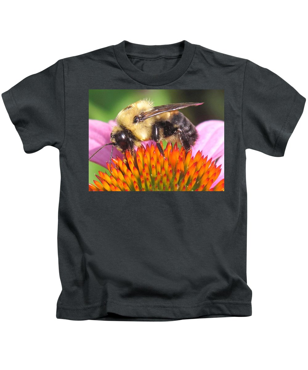 Bee Kids T-Shirt featuring the photograph Busy by Ian MacDonald