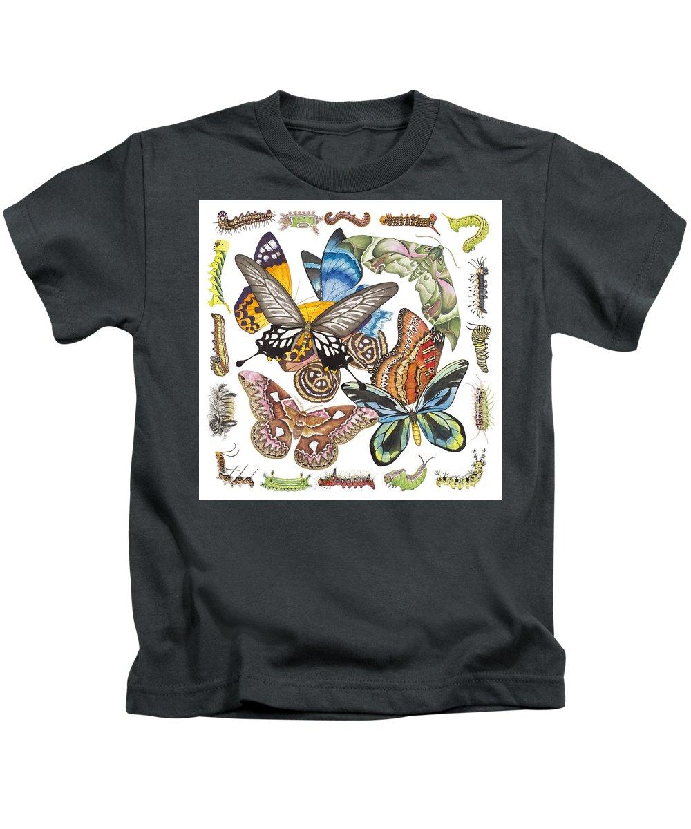 Butterflies Kids T-Shirt featuring the painting Butterflies Moths Caterpillars by Lucy Arnold