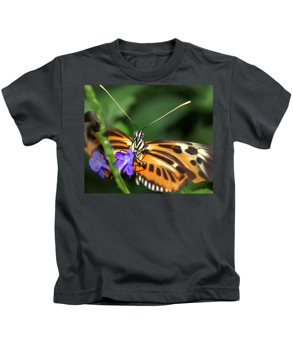 Butterfly Kids T-Shirt featuring the photograph Butterfly 2 Eucides Isabella by Heather Coen