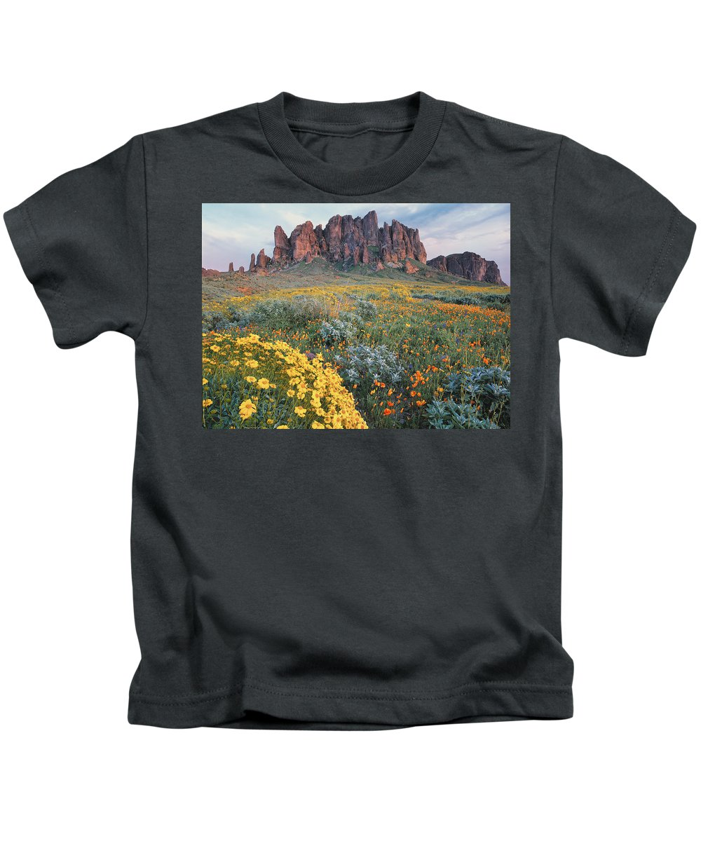 00175967 Kids T-Shirt featuring the photograph California Brittlebush Lost Dutchman by Tim Fitzharris