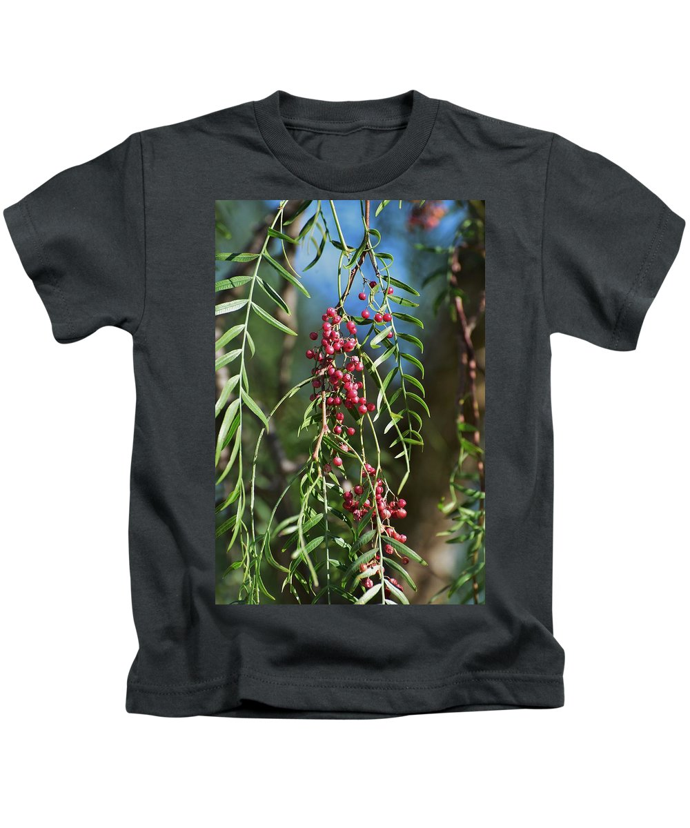 Linda Brody Kids T-Shirt featuring the photograph California Pepper Tree Leaves Berries I by Linda Brody