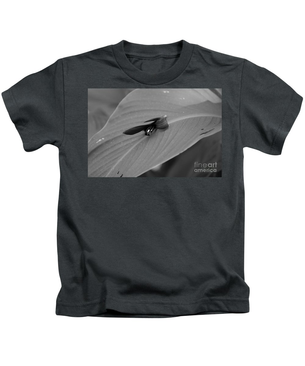 Kids T-Shirt featuring the photograph Canna In Black And White by Kitrina Arbuckle