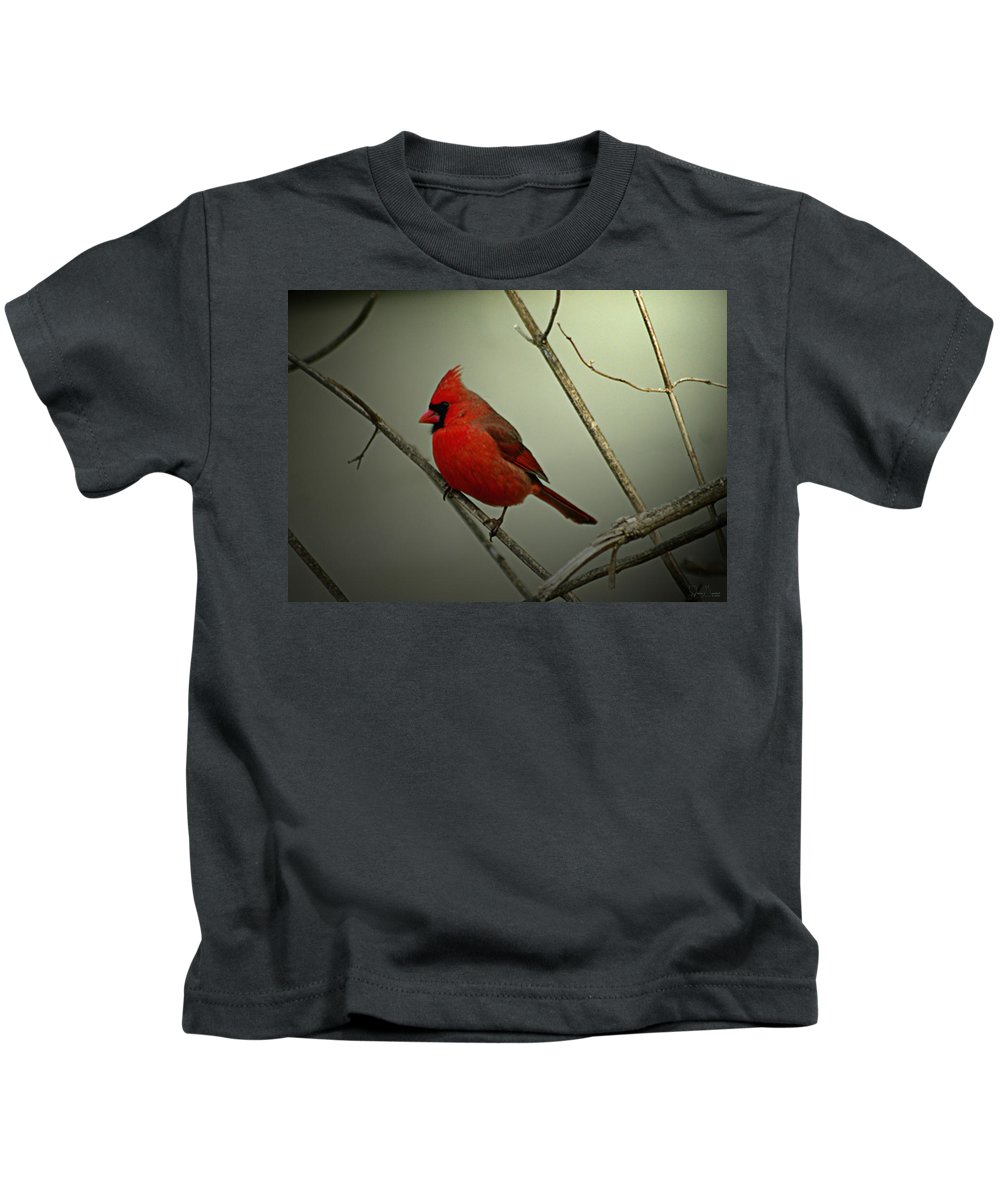 Jenny Gandert Kids T-Shirt featuring the photograph Cardinal And The Setting Sun by Jenny Gandert
