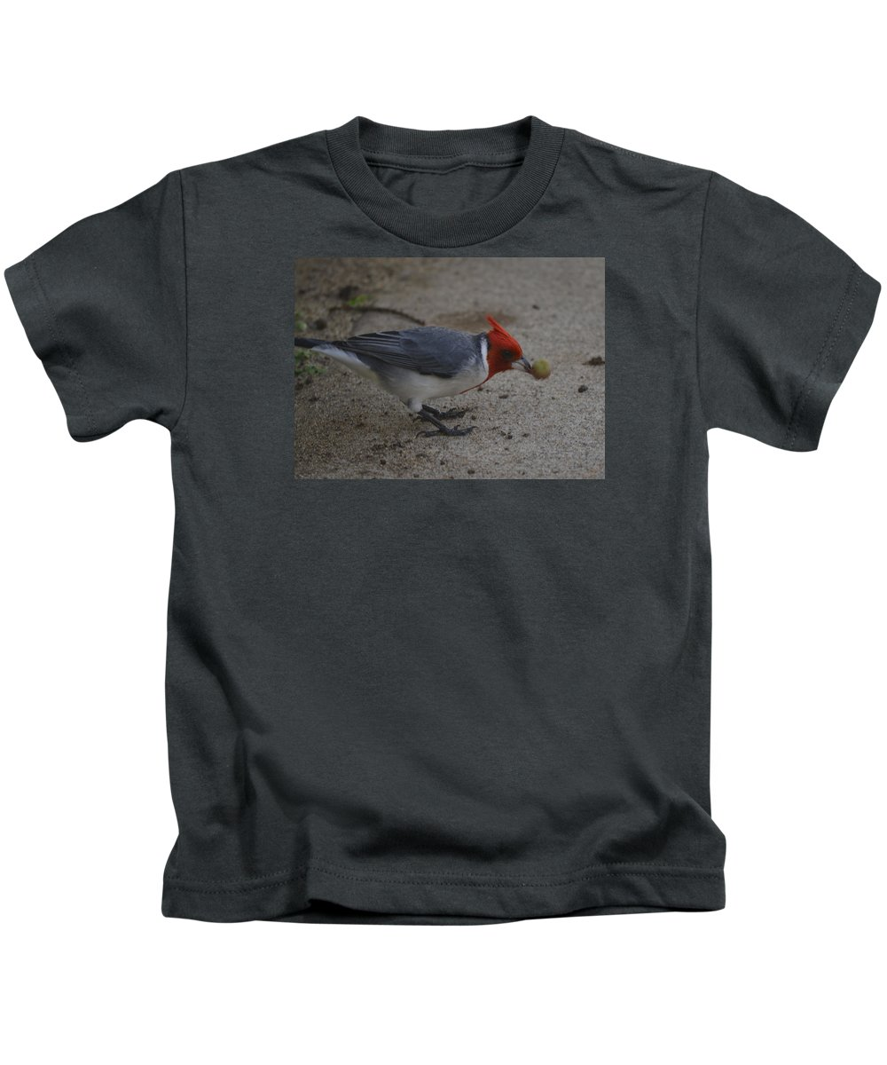 Cardinal Kids T-Shirt featuring the photograph Cardinal Examining Food by Karen Rose Warner