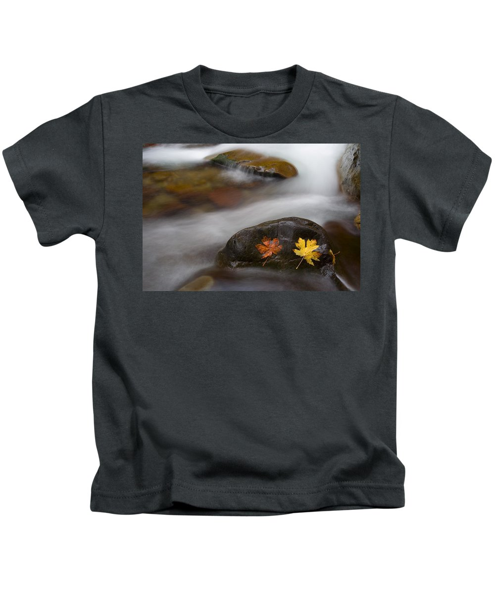 Leaves Kids T-Shirt featuring the photograph Castaways by Mike Dawson