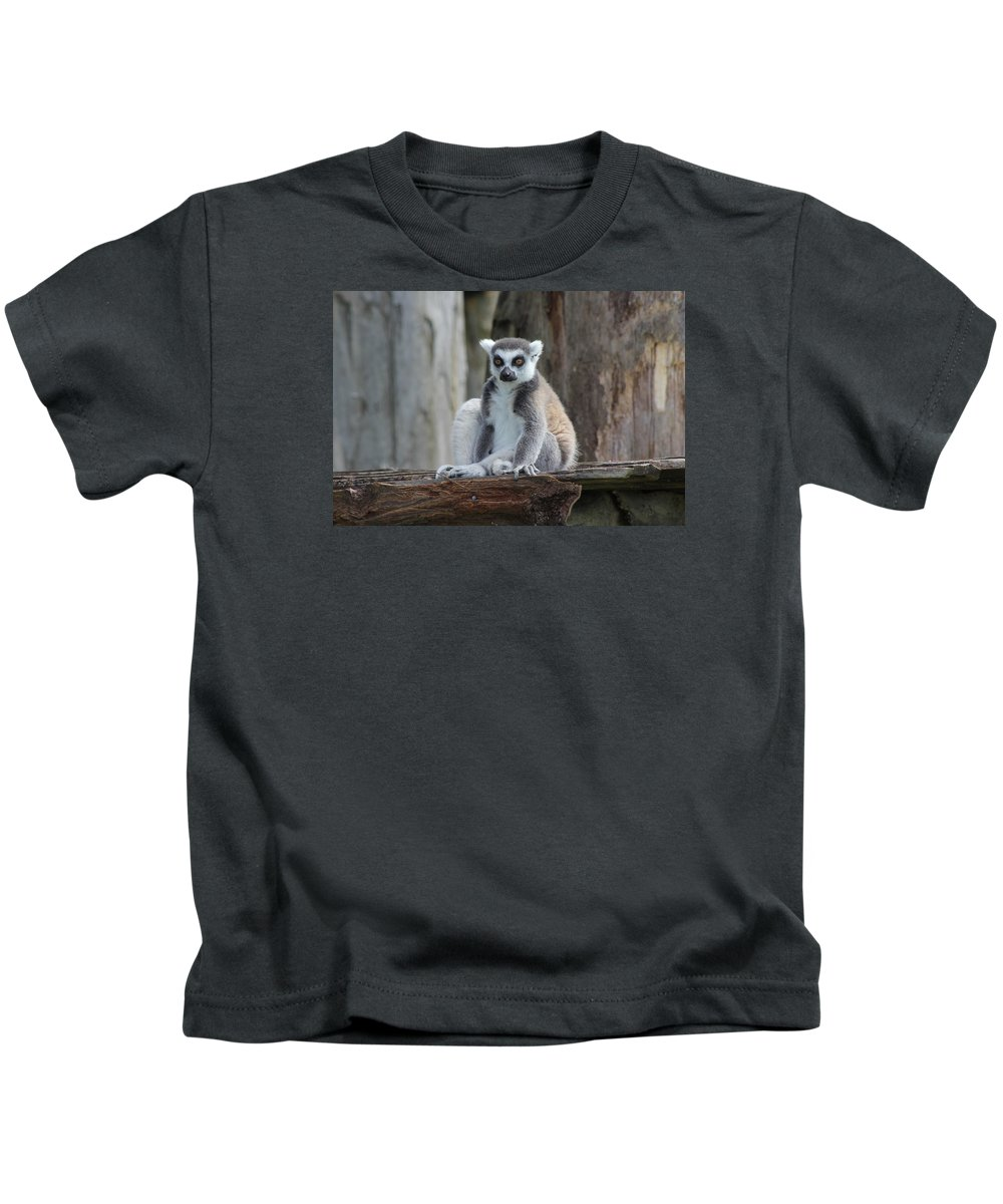 Lemar Kids T-Shirt featuring the photograph Casual Lemar by Kyle Hillman