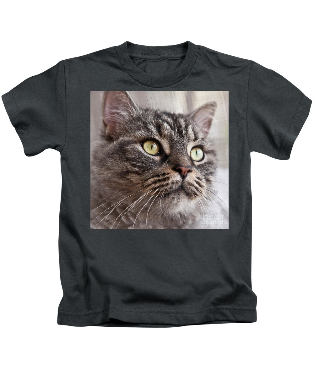 Nature Kids T-Shirt featuring the photograph Cat Of Nicole 4 by Heiko Koehrer-Wagner