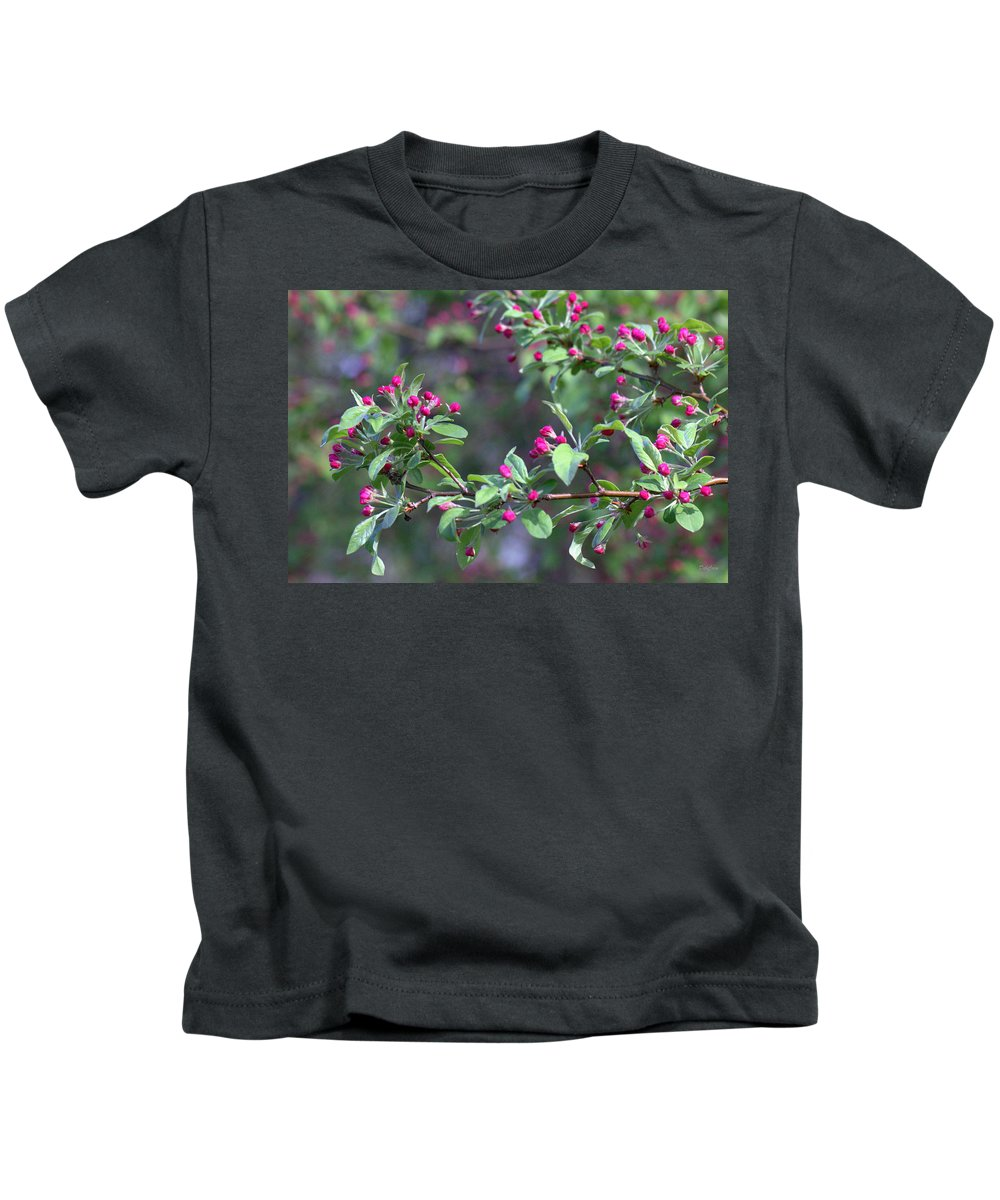 Cherry Tree Kids T-Shirt featuring the photograph Cherry Blossom Blooms by Deborah Crew-Johnson