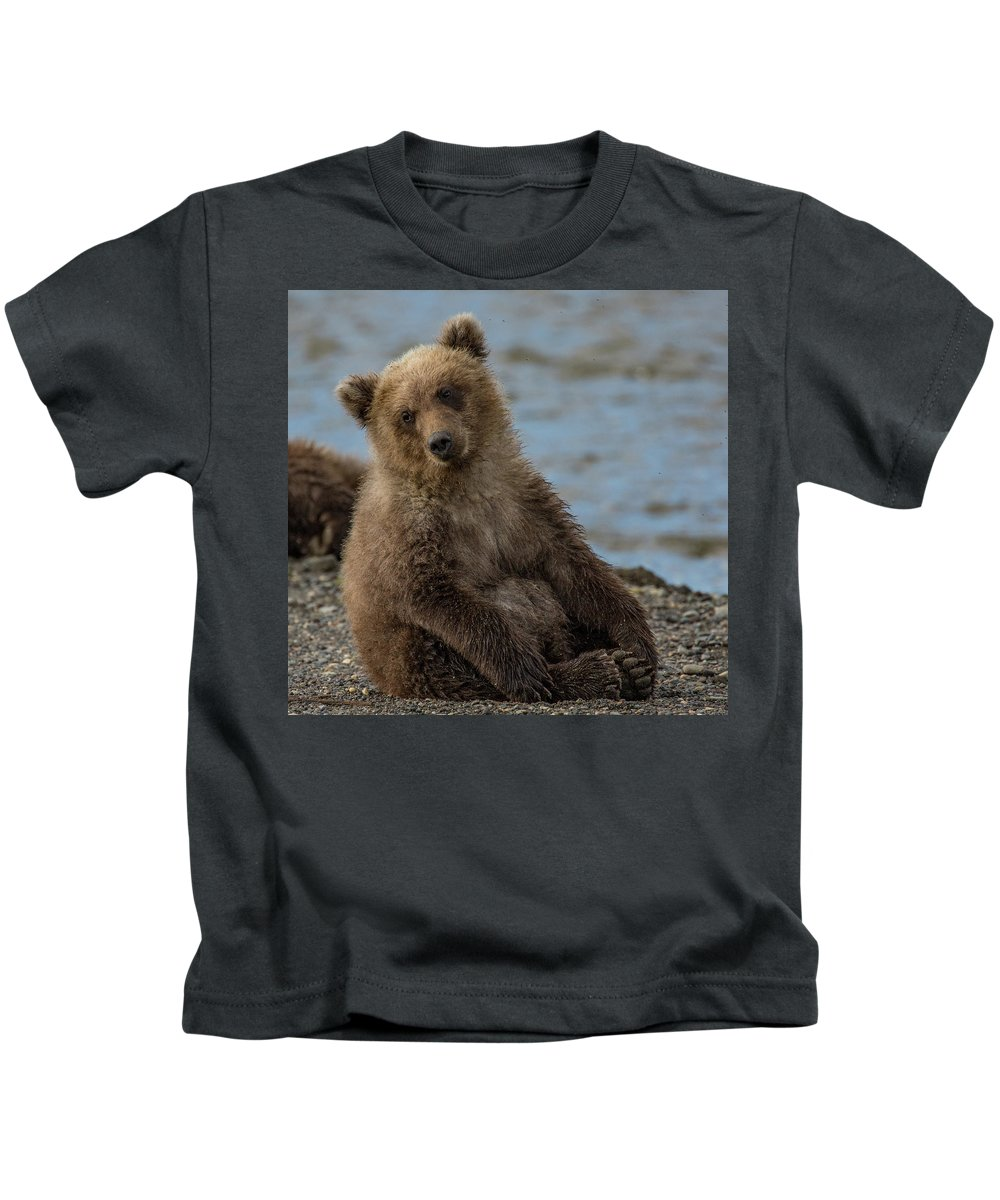 Bear Kids T-Shirt featuring the photograph Content by Kathy Whitehurst