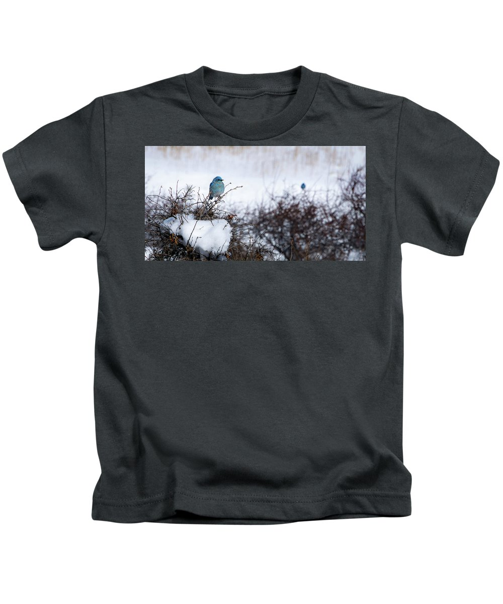 Artisans Kids T-Shirt featuring the photograph Couple Chilly Bluebirds by Cary Leppert