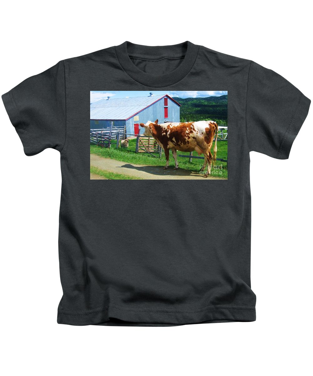 Photograph Cow Sheep Barn Field Newfoundland Kids T-Shirt featuring the photograph Cow Sheep And Bicycle by Seon-Jeong Kim