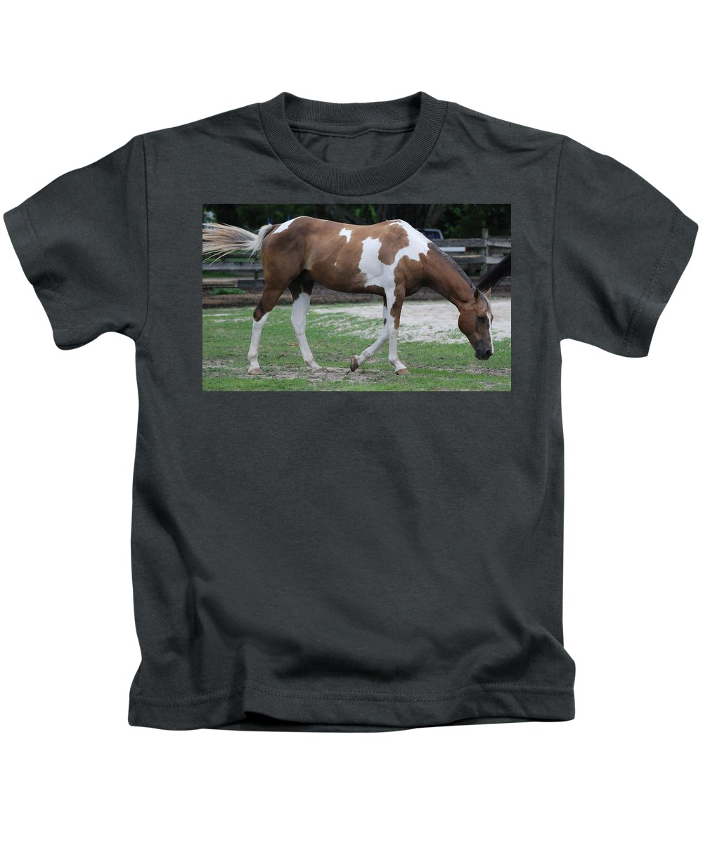 Horse Kids T-Shirt featuring the photograph Cow Spotted Horse by Rob Hans