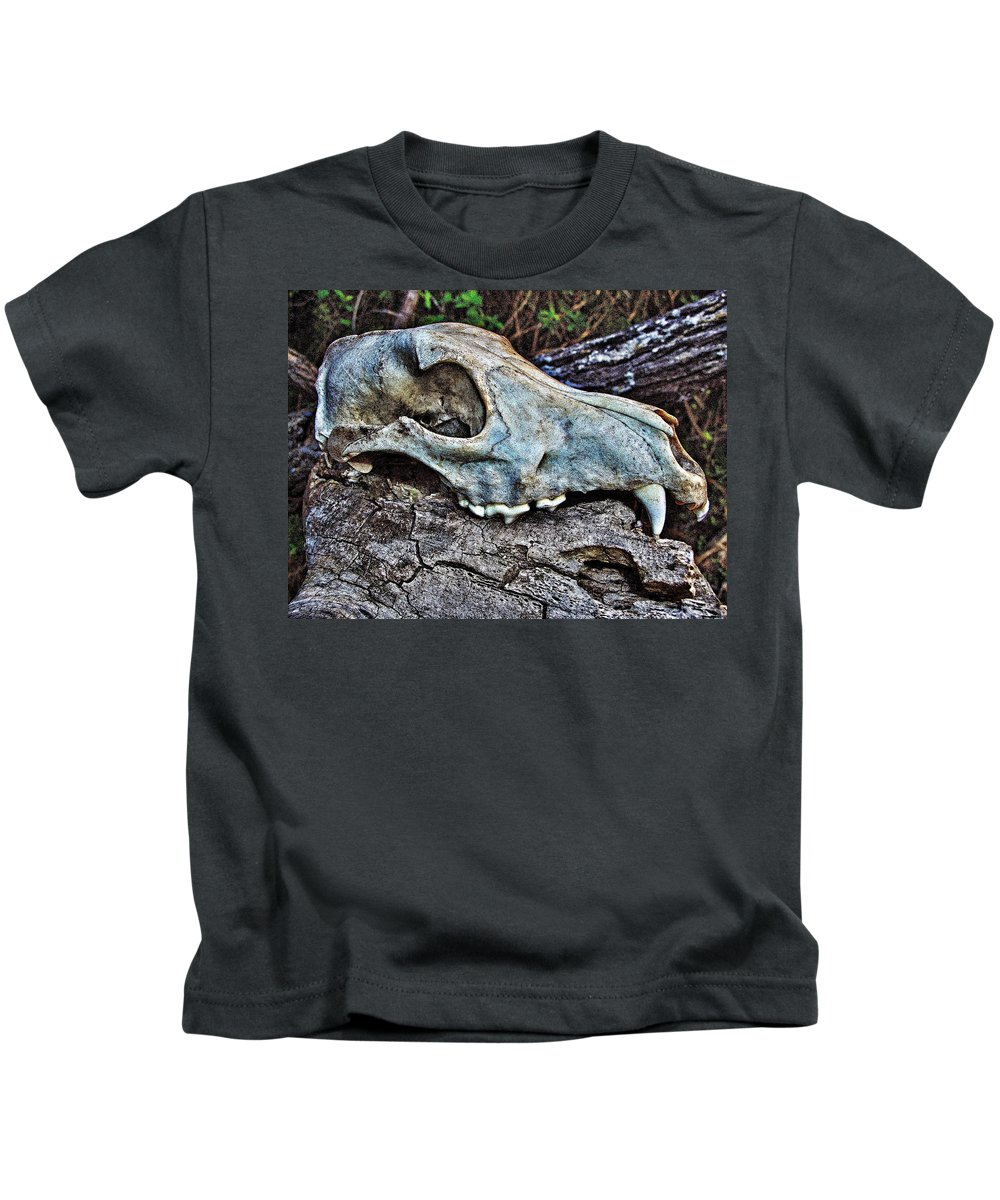 Skull Kids T-Shirt featuring the photograph Coyote Skull by Bob Welch