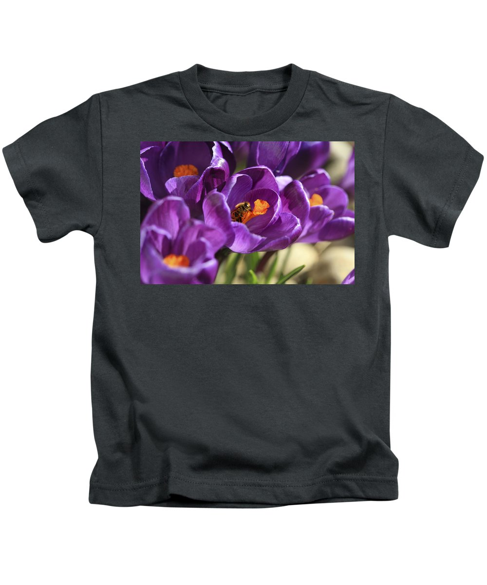 Bee Kids T-Shirt featuring the photograph Crocus And Bee by Marilyn Hunt