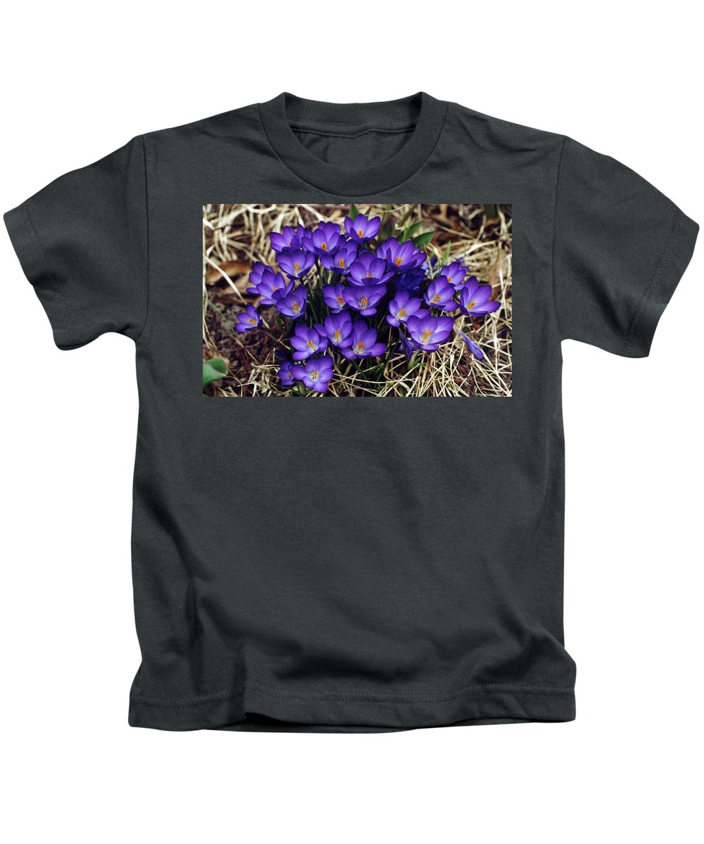 Crocus Kids T-Shirt featuring the digital art Crocus by Dorothy Binder