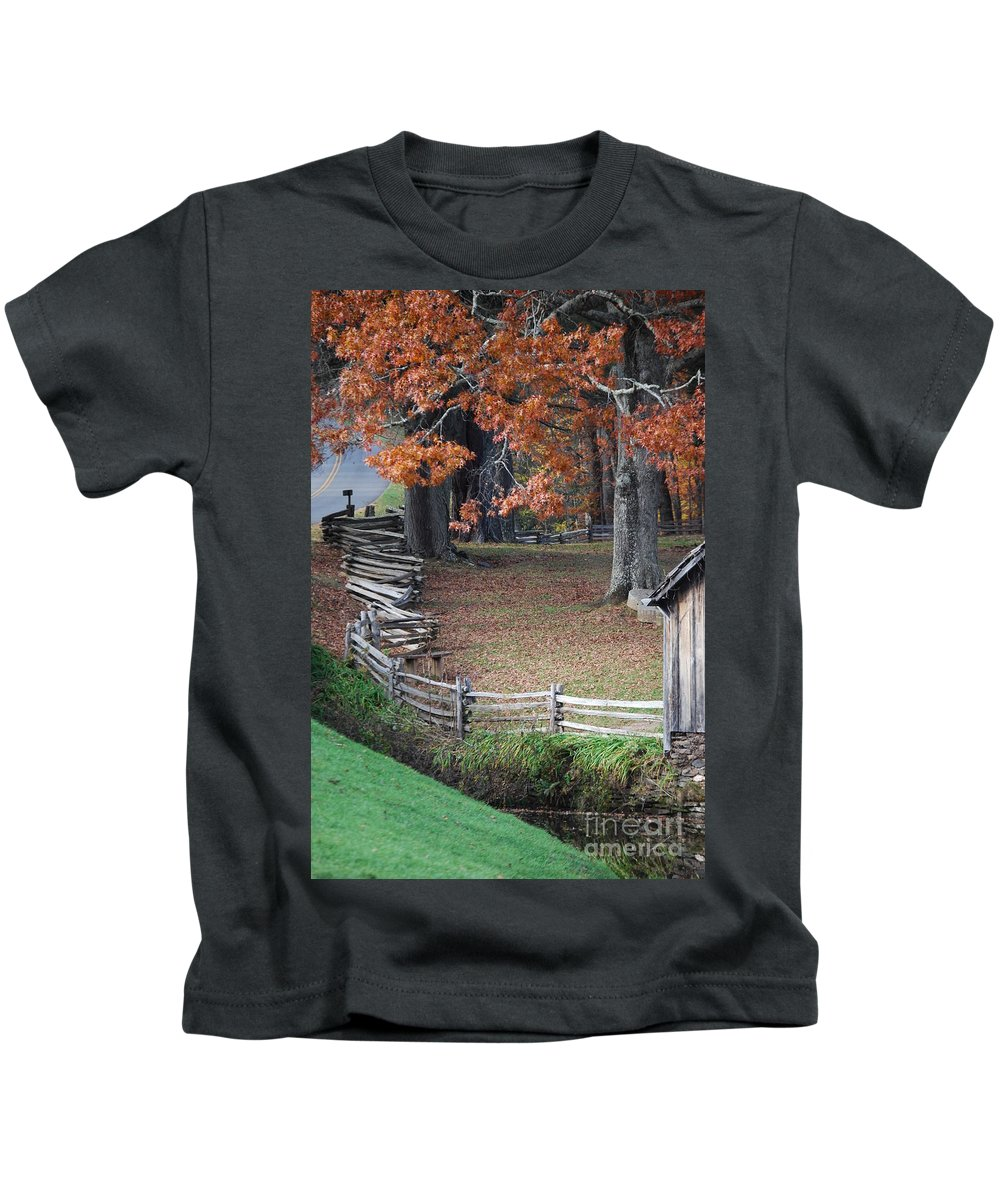 Archecture Kids T-Shirt featuring the photograph Crooked Fence by Eric Liller