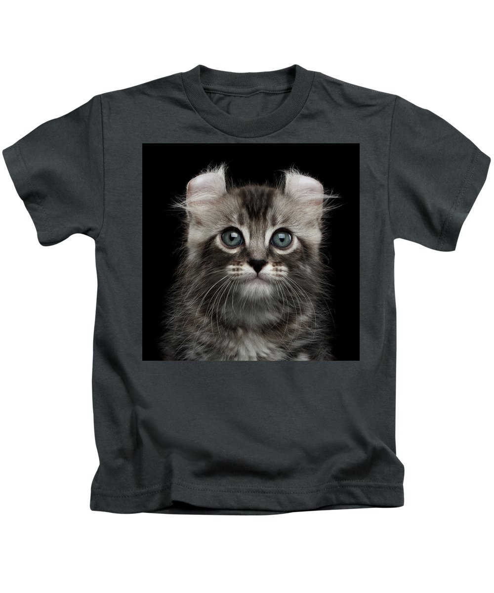 Curl Kids T-Shirt featuring the photograph Cute American Curl Kitten With Twisted Ears Isolated Black Background by Sergey Taran