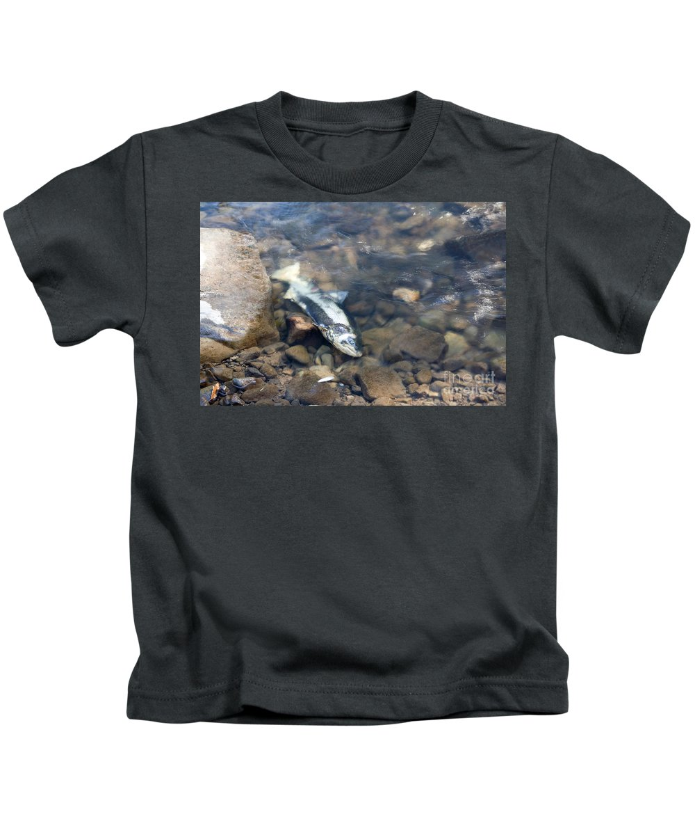 Salmon Kids T-Shirt featuring the photograph Dead Chinook Salmon by Ted Kinsman