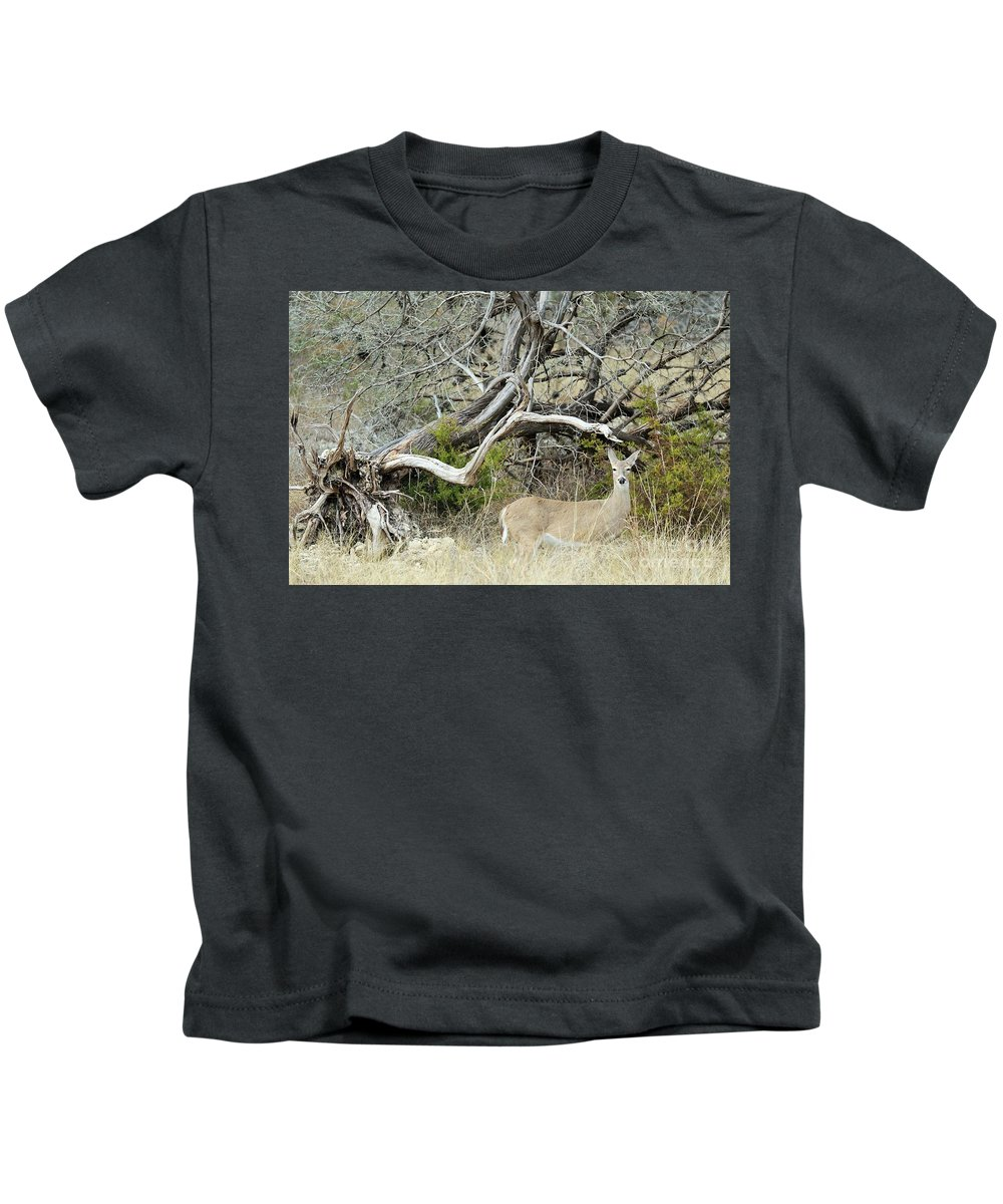 Kids T-Shirt featuring the photograph Deer 009 by Jeff Downs