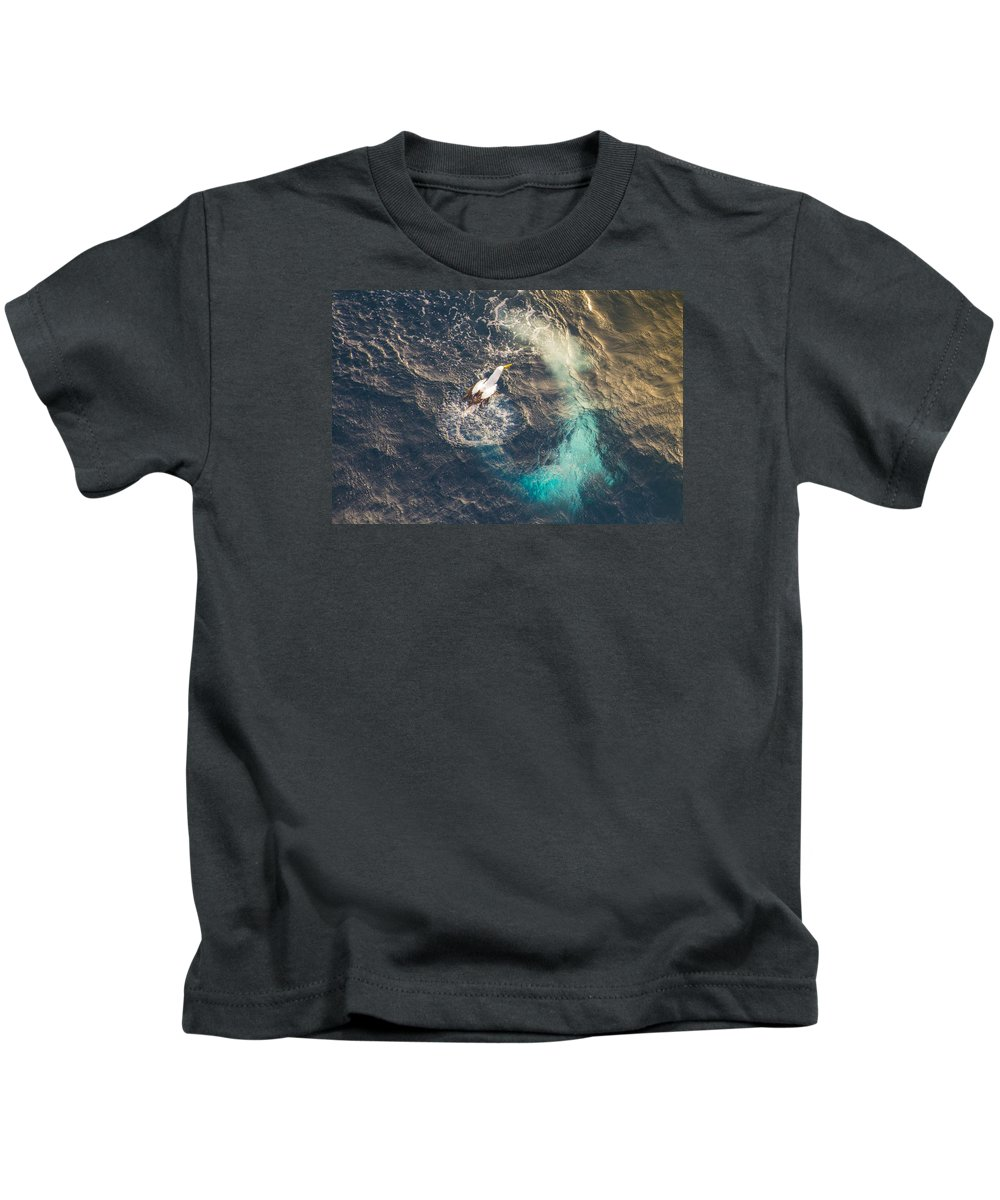 Bird Kids T-Shirt featuring the photograph Dive-bomb by Will Akers