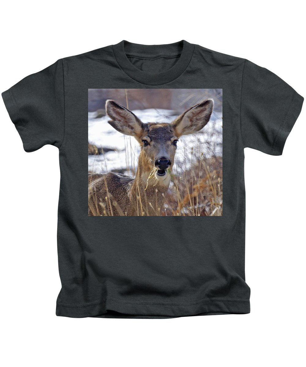 Doe Kids T-Shirt featuring the photograph Doe by Heather Coen