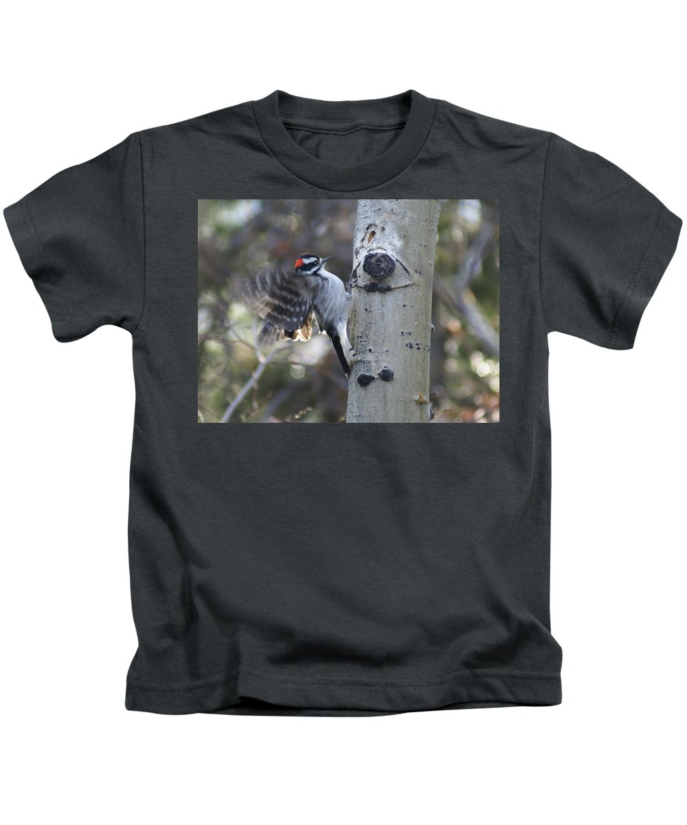 Woodpecker Kids T-Shirt featuring the photograph Downy Woodpecker by Heather Coen