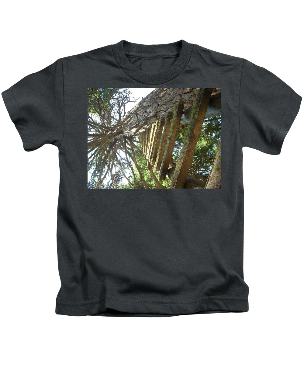 Ladder Kids T-Shirt featuring the photograph Dream Up by Sara Stevenson