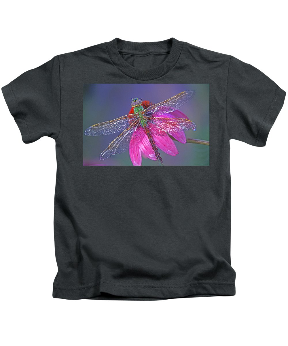 Dew Covered Dragonfly Rests On Purple Cone Flower Kids T-Shirt featuring the photograph Dreaming Dragon by Bill Morgenstern