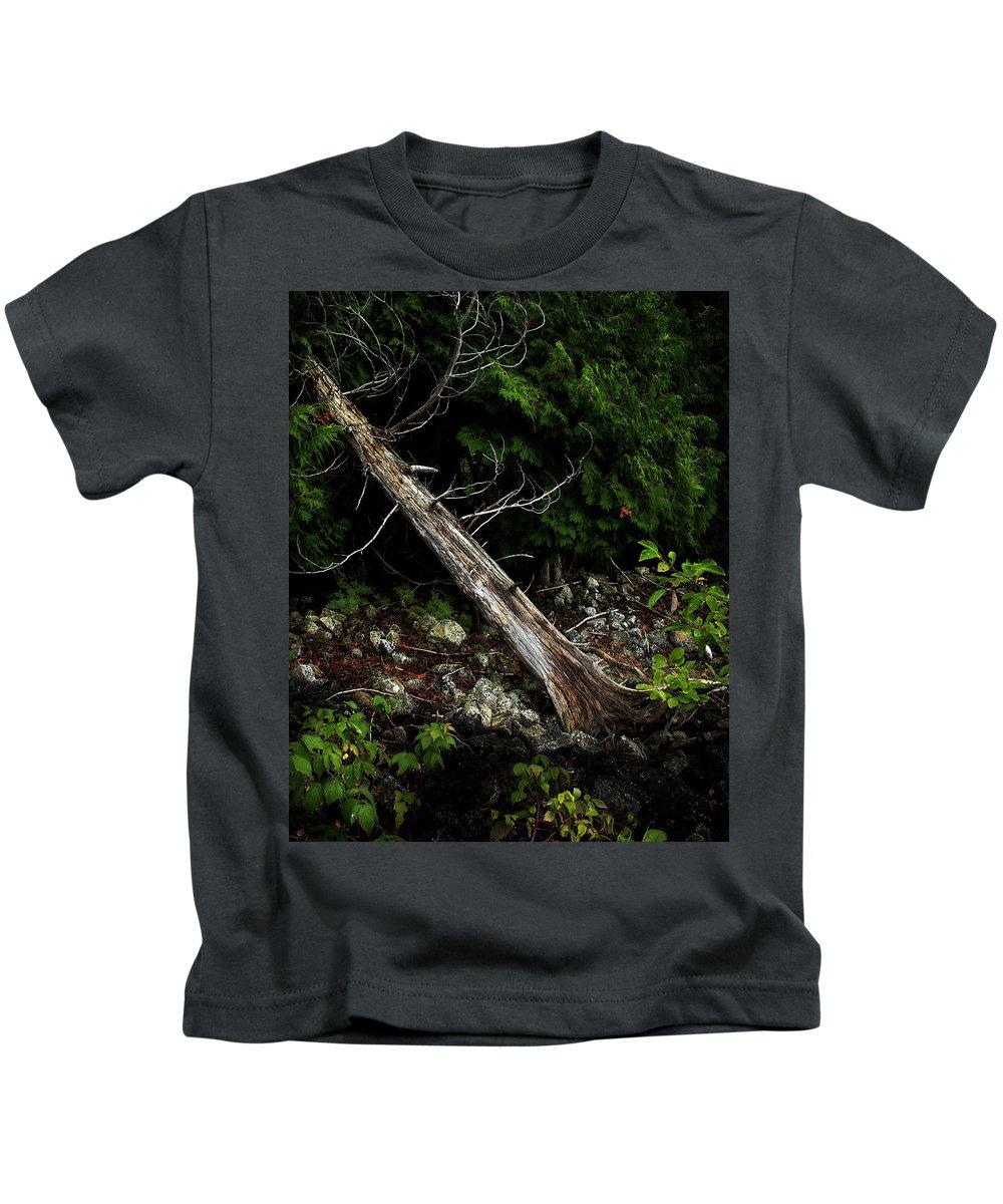 Tree Kids T-Shirt featuring the photograph Drifted Tree by David Jilek