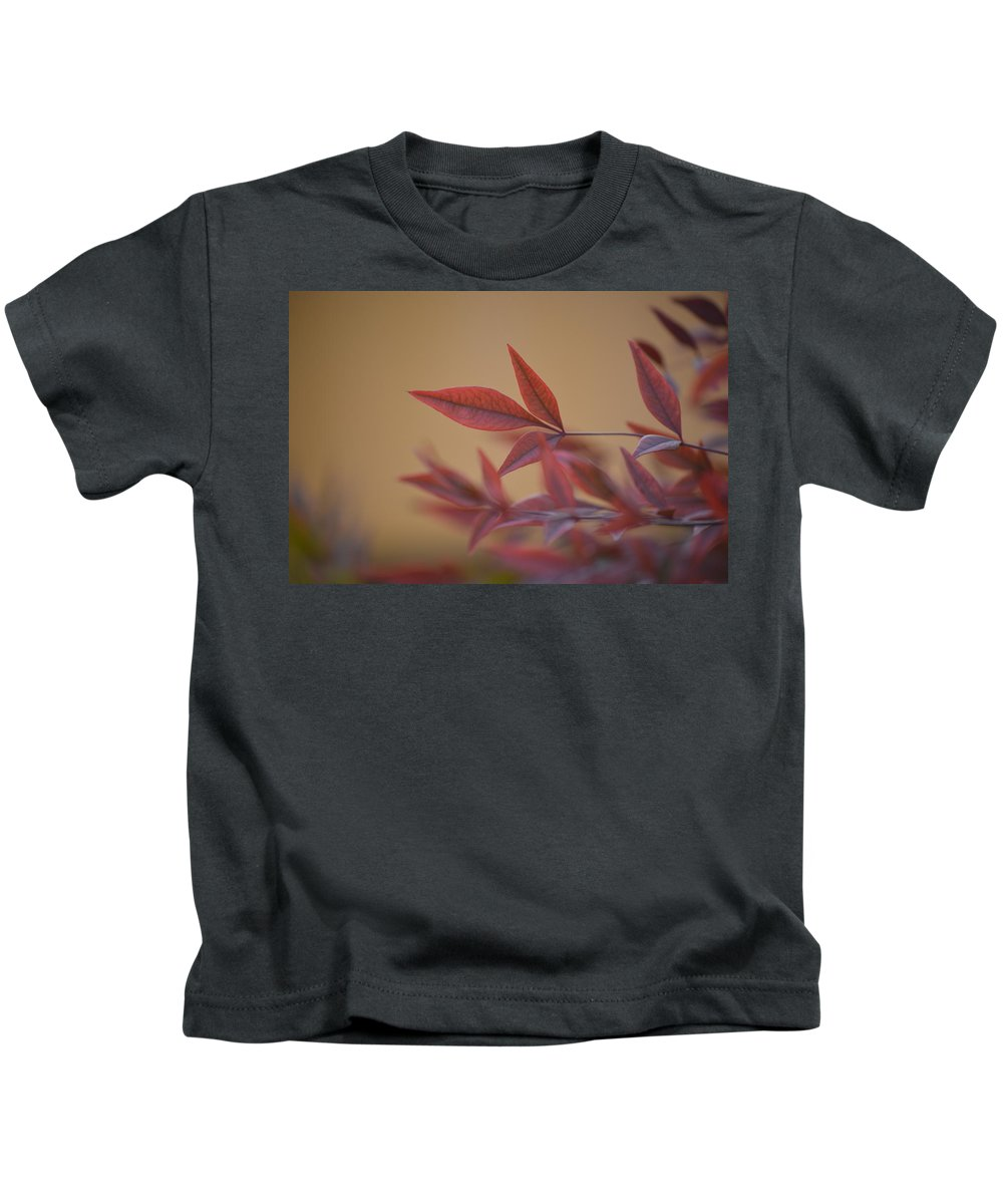 Red Kids T-Shirt featuring the photograph Earth Tones by Mark Bell