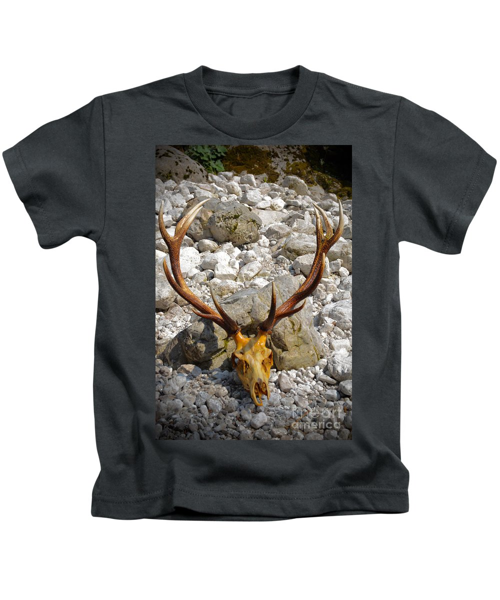 Deer Kids T-Shirt featuring the photograph Al Cervo by Photos By Zulma