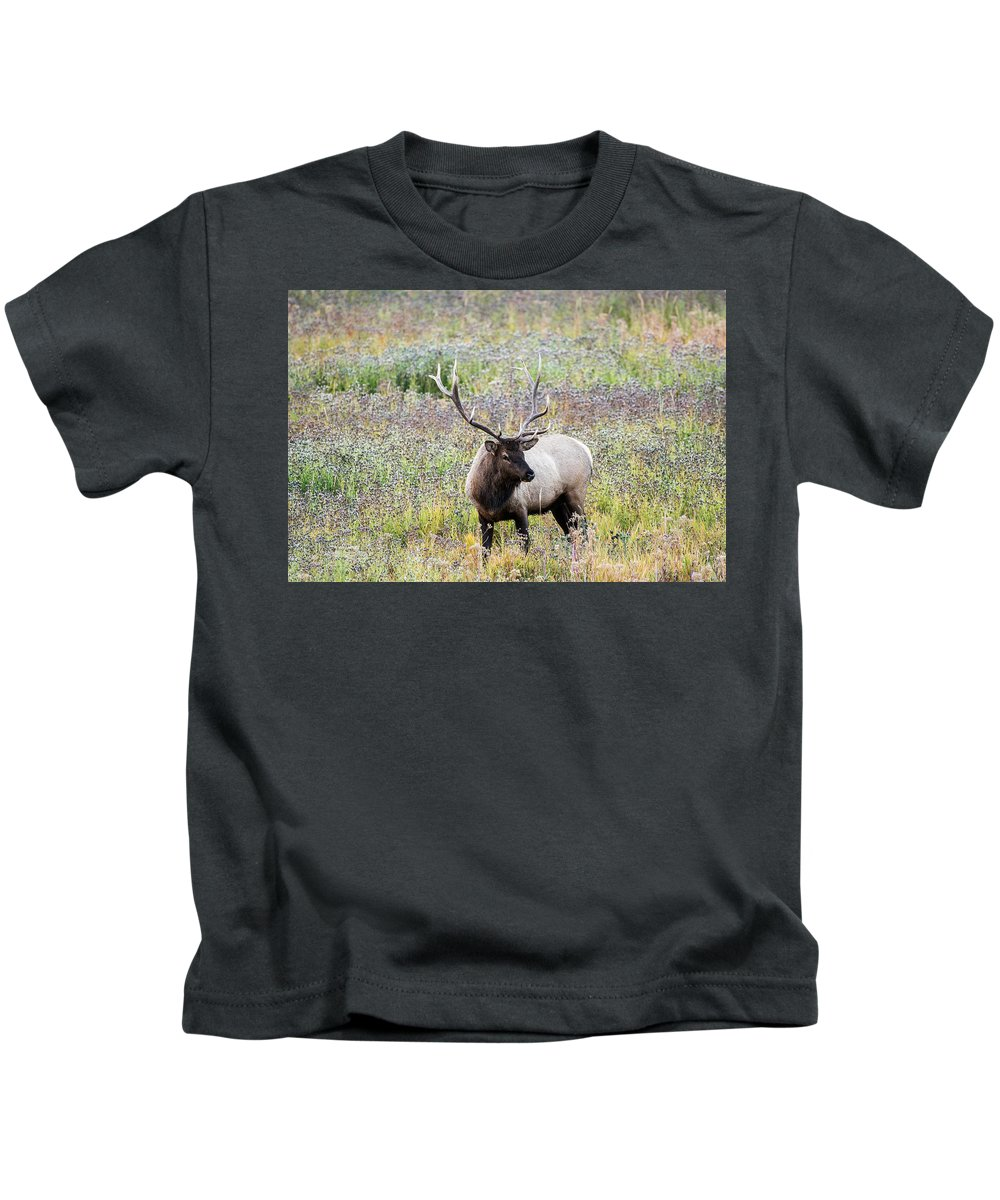 Yellowstone Kids T-Shirt featuring the photograph Elk In Wildflowers #1 by Scott Read