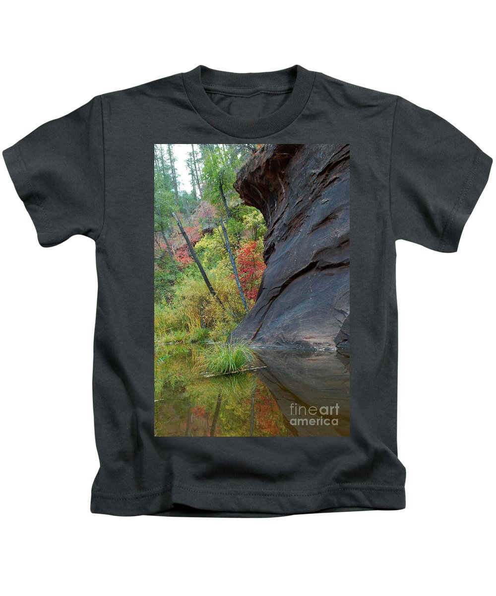 Landscape Kids T-Shirt featuring the photograph Fall Colors Peek Around Mountain Vertical by Heather Kirk