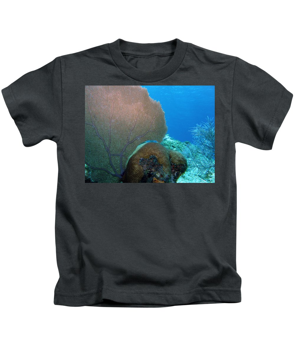 Nature Kids T-Shirt featuring the photograph Fan Vs. Brain by Kimberly Mohlenhoff
