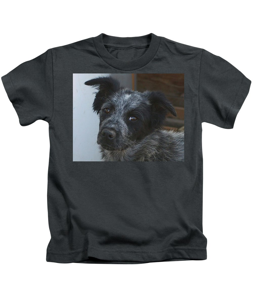 Canines Kids T-Shirt featuring the photograph Farm Puppy by Jeff Swan