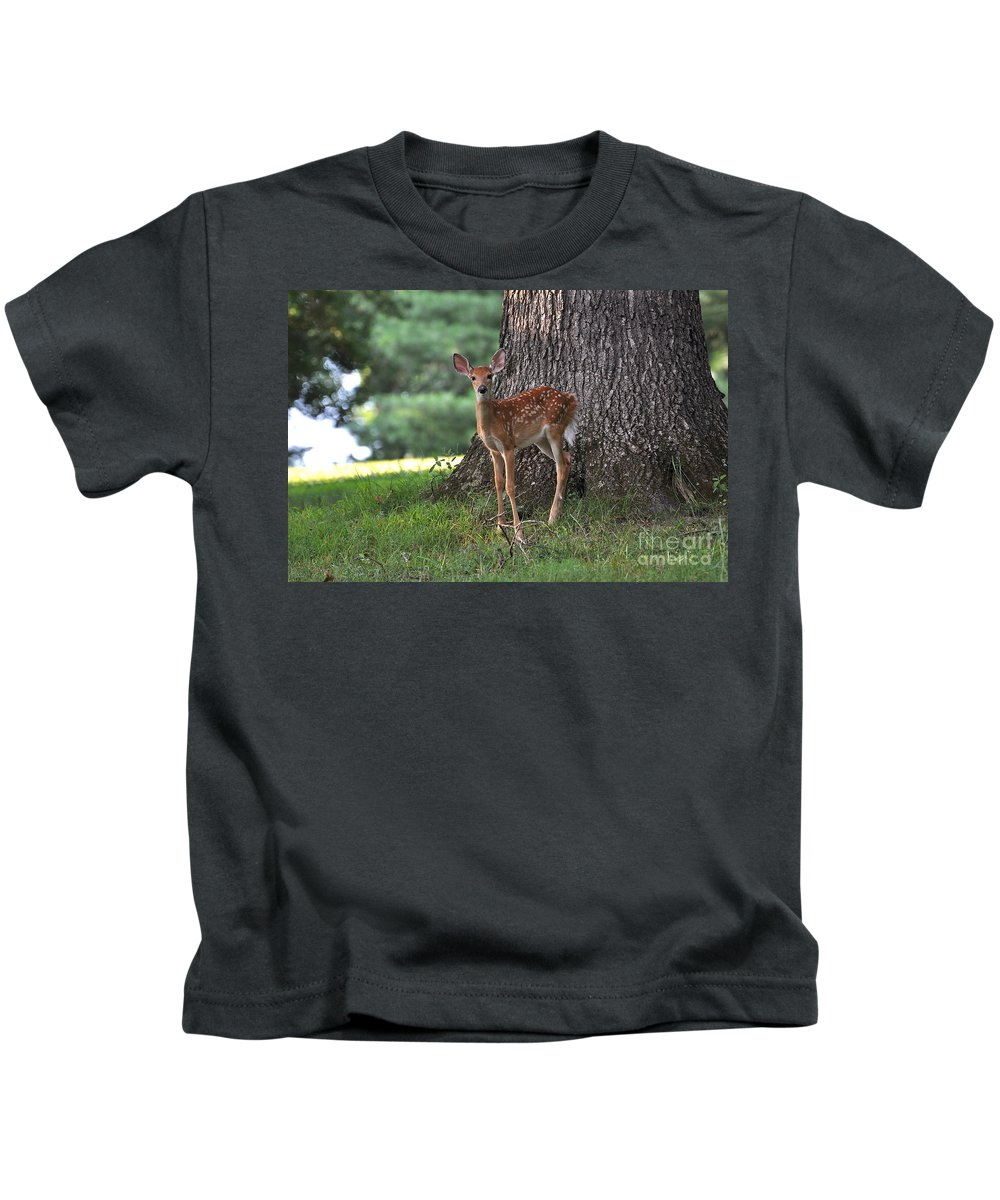 Fawn Kids T-Shirt featuring the photograph Fawn by Todd Hostetter