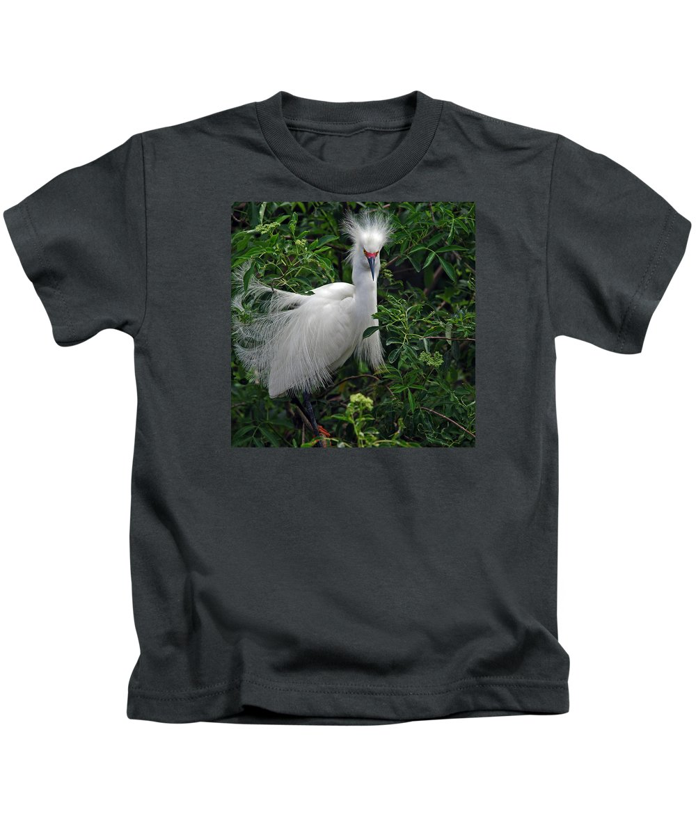 Names Of Birds Kids T-Shirt featuring the photograph Feather 8-9 by Skip Willits