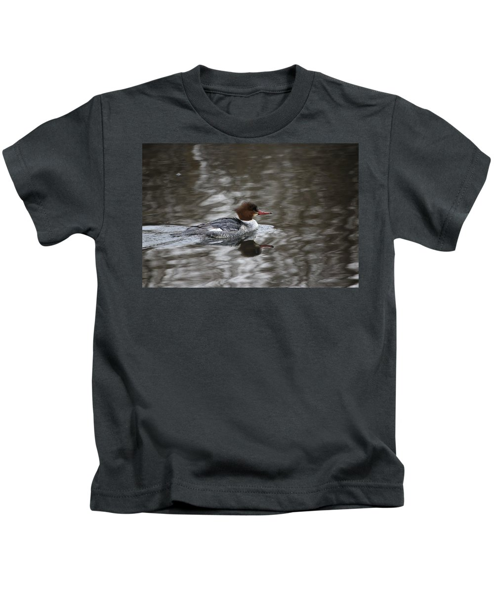 Gary Hall Kids T-Shirt featuring the photograph Female Common Merganser by Gary Hall
