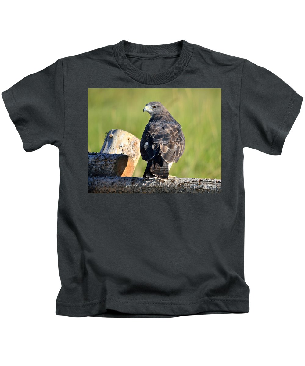 Swainson's Kids T-Shirt featuring the photograph Fence Sitter by Brad Christensen