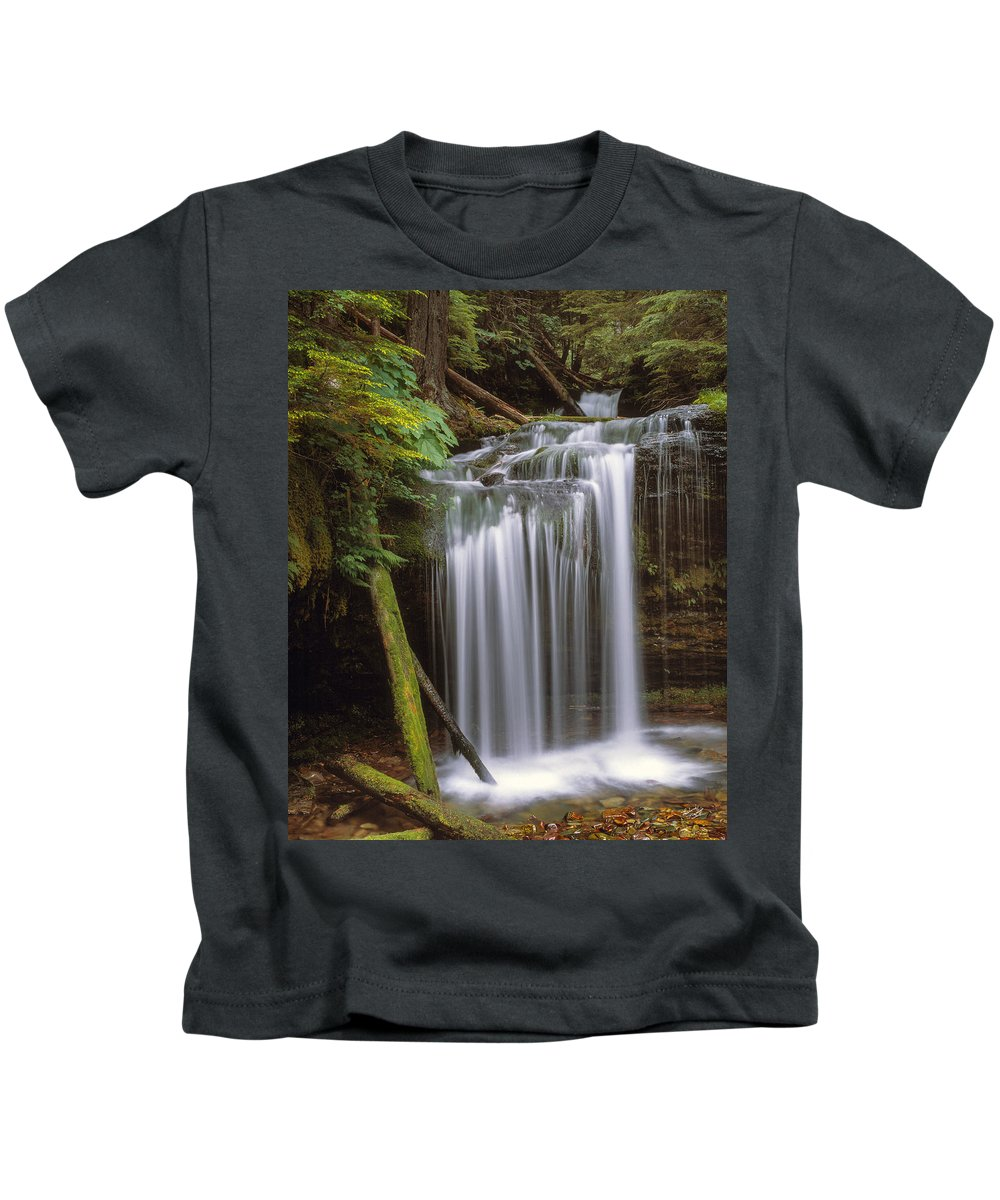 Beautiful Kids T-Shirt featuring the photograph Fern Falls by Leland D Howard
