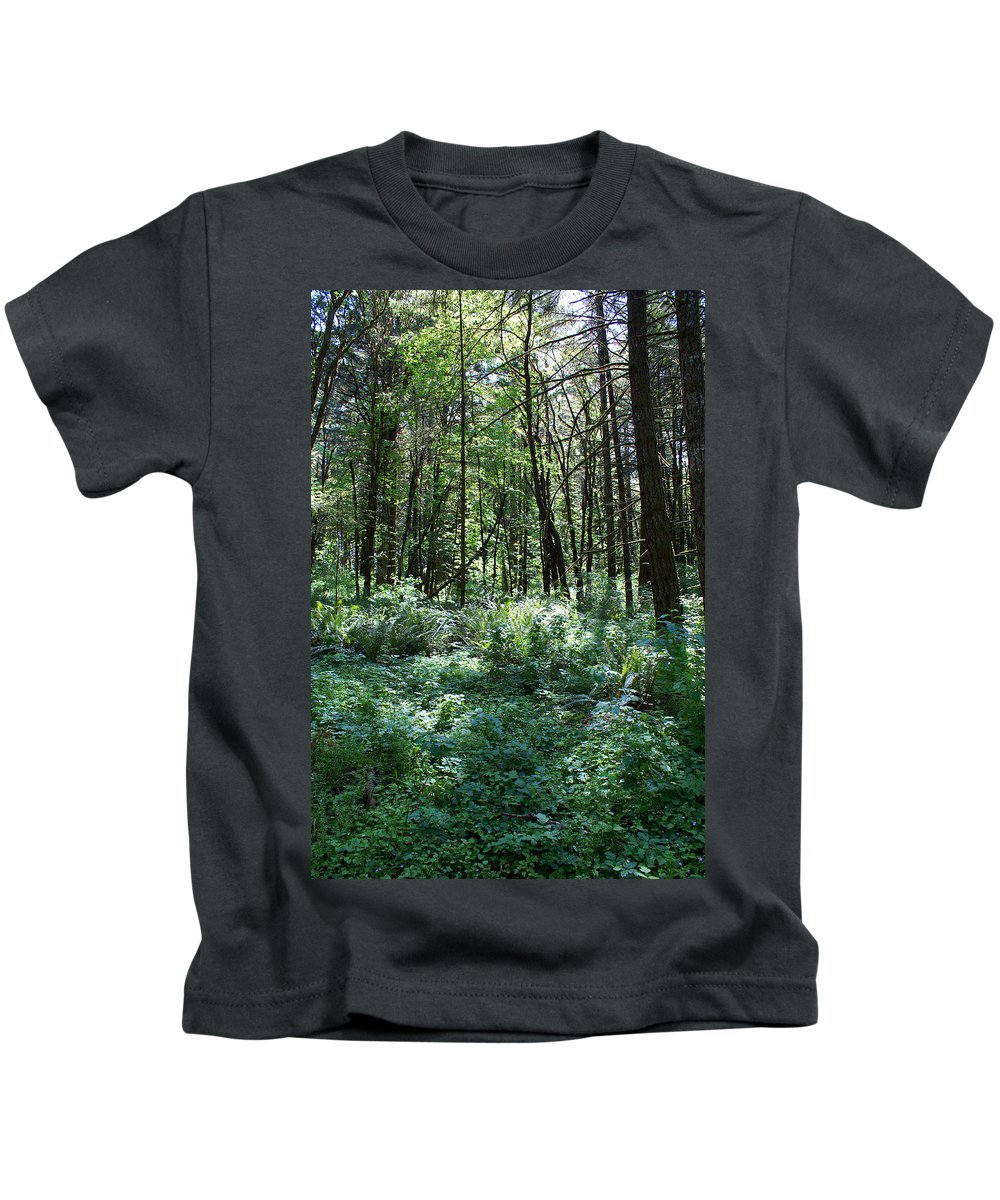 Nature Kids T-Shirt featuring the photograph Filtered Forest Sunlight In Oregon by Ben Upham III