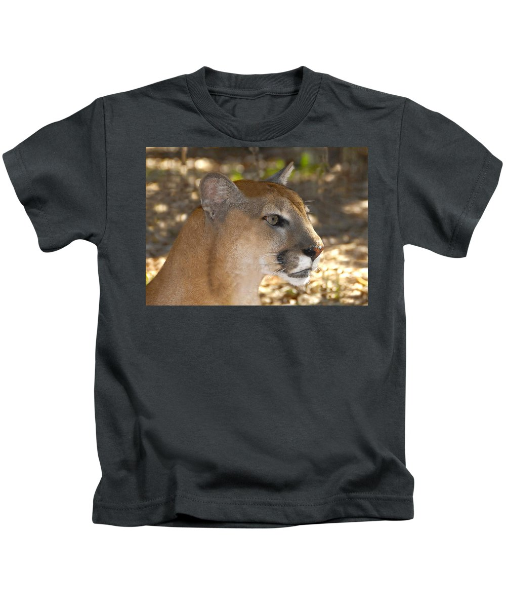 Florida Kids T-Shirt featuring the photograph Florida Panther by David Lee Thompson
